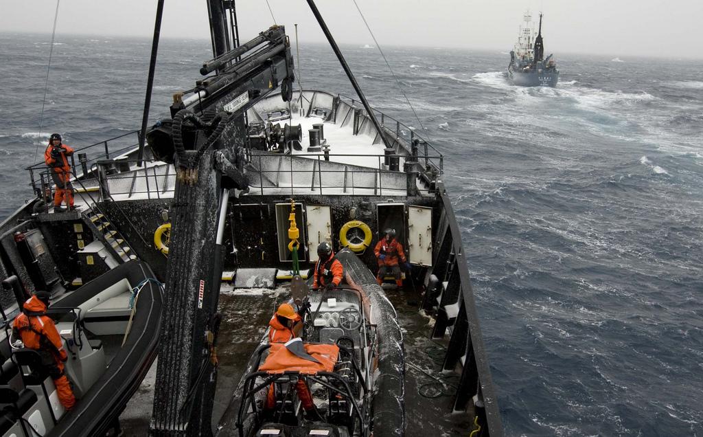 Корабль общества охраны морской фауны Sea Shepherd преследует японских китобоев-браконьеров в рамках операции «Мусаси» в 2008 году. Фото: John/Fickr.com
