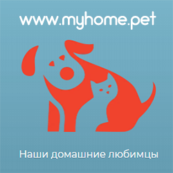 https://www.readok.info/wp-content/uploads/2020/07/myhomepet.png